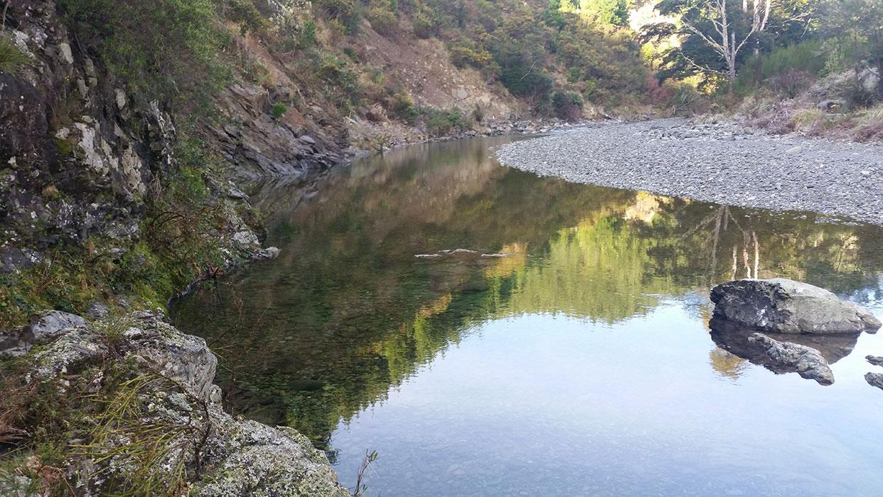 lee river